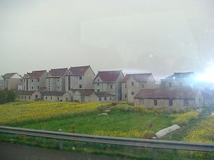杭州 農家と菜の花畑